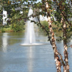 Century Lake (1)