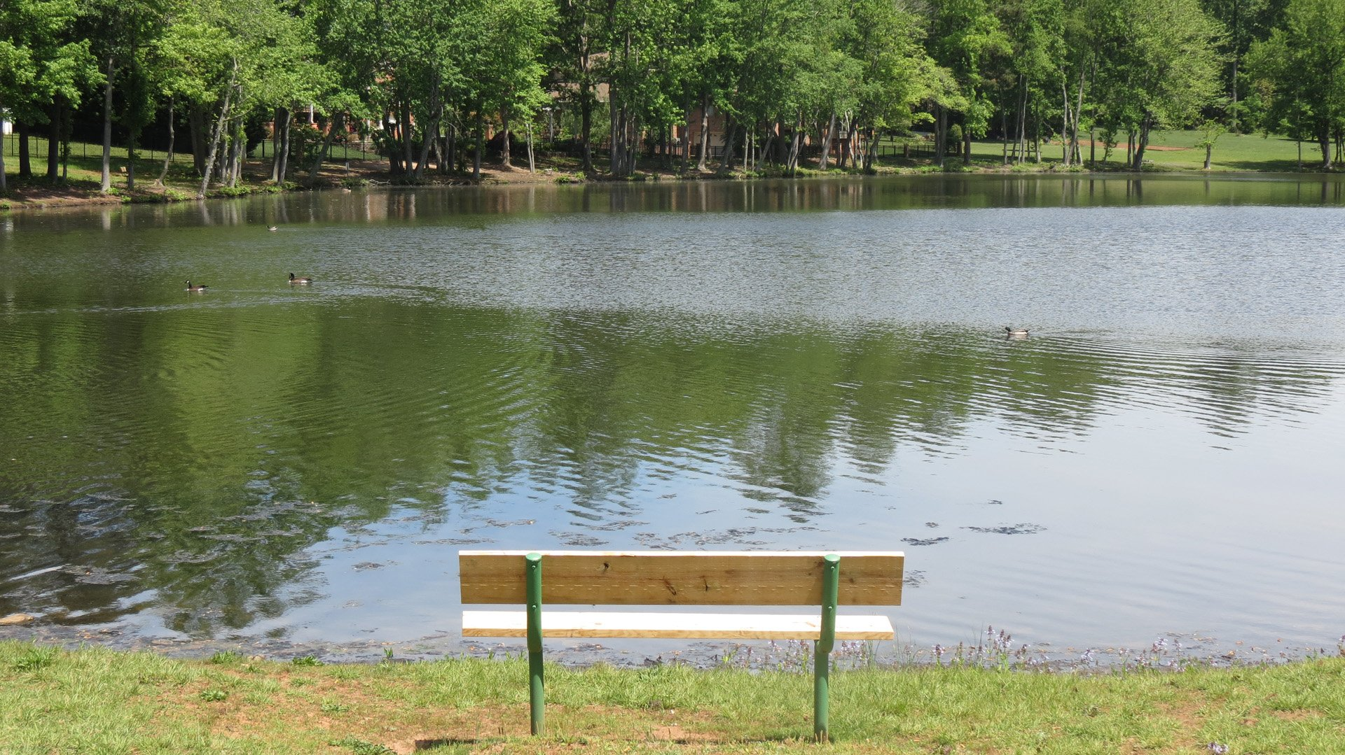 Picture of Old Kernersville Lake